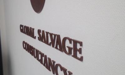 Acrylox Global Salvage